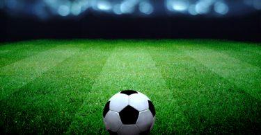 Набор добровольцев на чемпионат мира по футболу в России начнется в апреле 2016 года