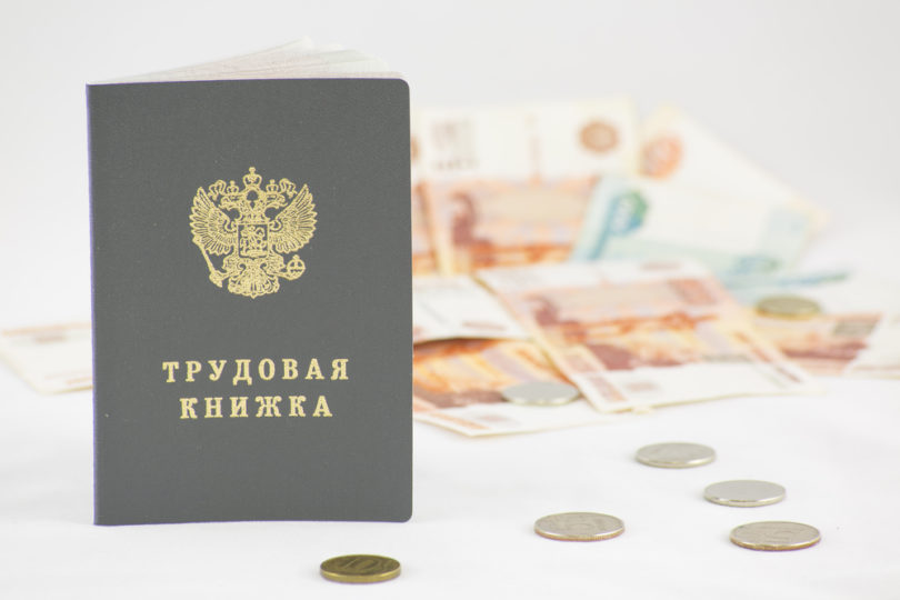 Employment history, salary, career, recruitment, HR, ruble, money