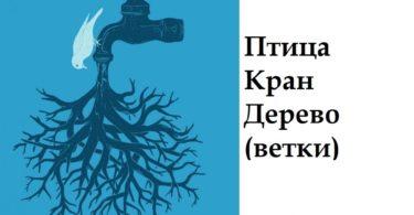 bezymyannyjvv