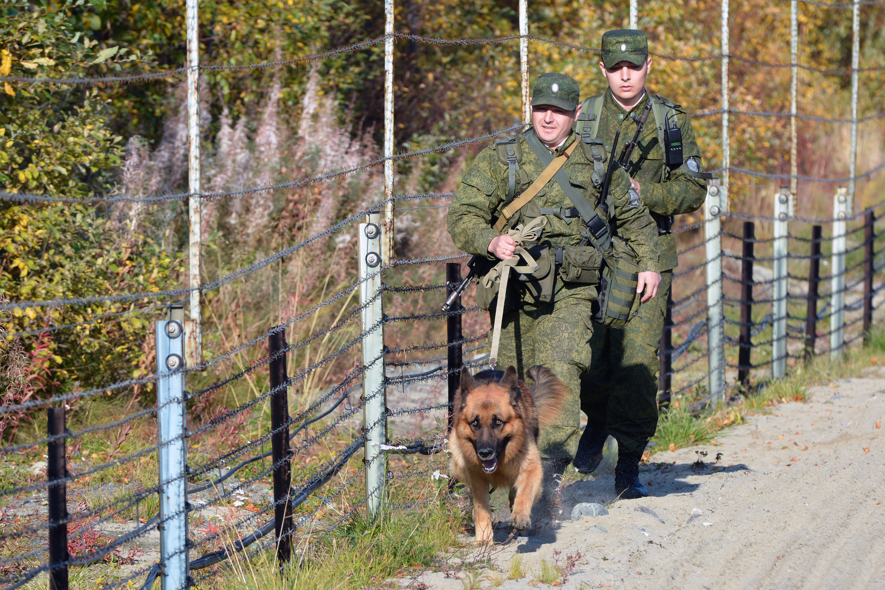 hunting_border_guards_with_dog_edited